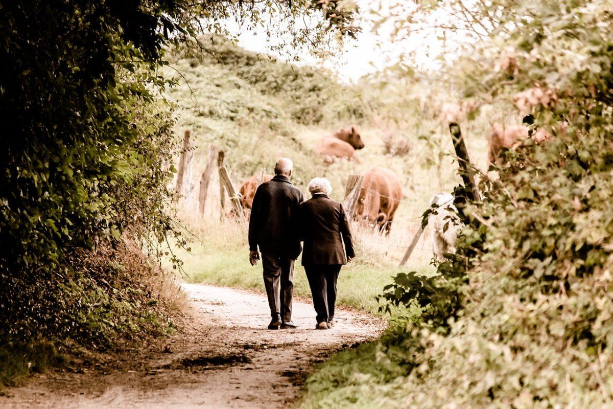 ¿Placas amiloides y análisis de sangre para diagnosticar Alzheimer en etapas tempranas?